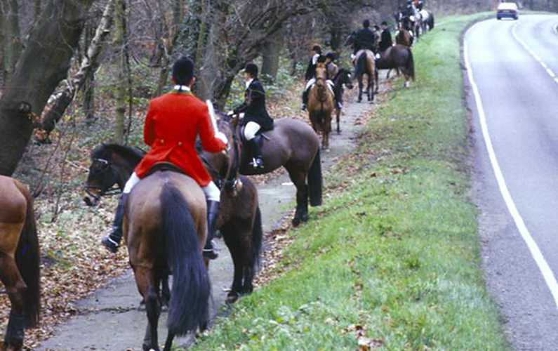Foxhunt hunting up by road